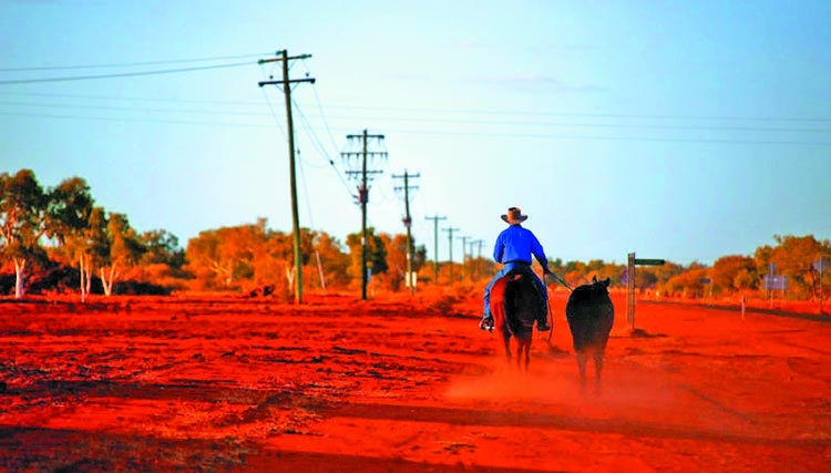 Australian banks face rural  lending reckoning