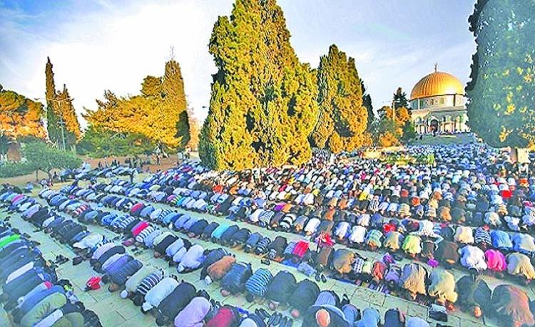 Stray thoughts on Eid-ul-Azha