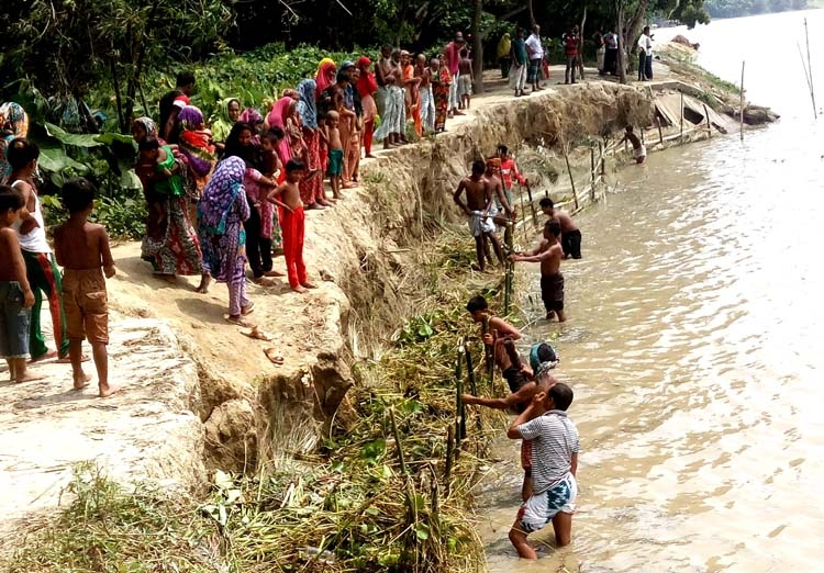 Severe erosion in Padma, eight  villages in Natore at stake