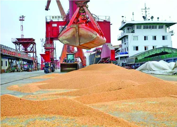 China slashes 2018/19 soybean import forecast