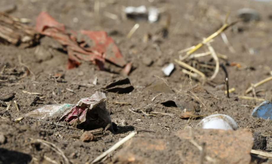 Experts caution study on plastics in humans is premature