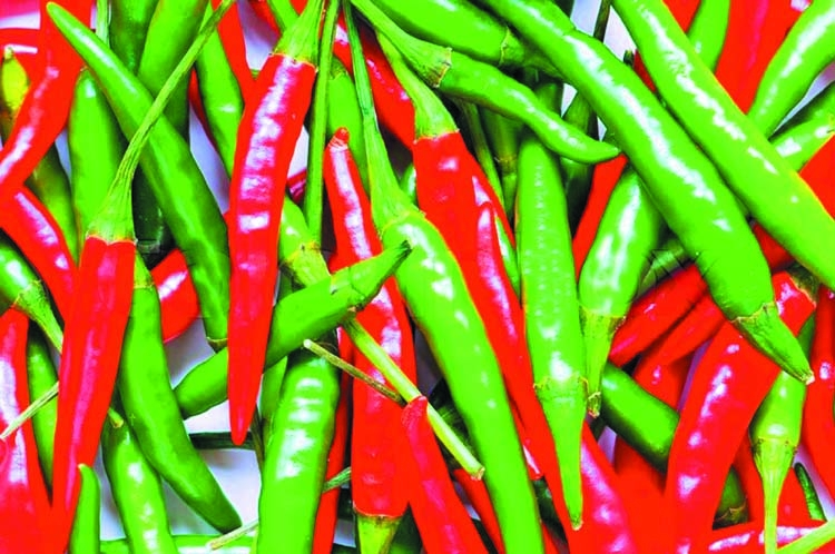 Could a hot pepper a day keep the doctor away?