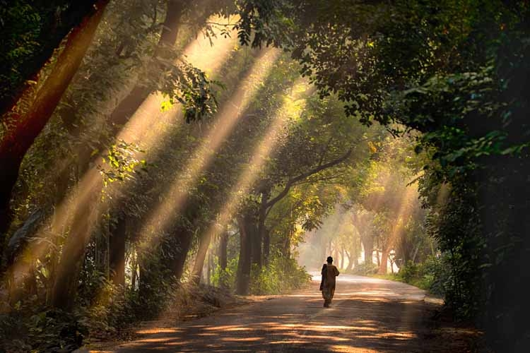 An eco-tourism delight