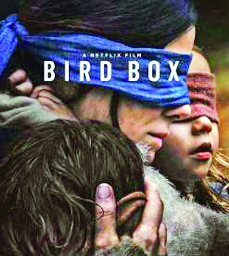 US driver in 'Bird Box blindfold' crashes in Utah