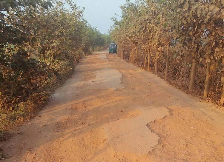 Dilapidated road condition creates sufferings in Saturia