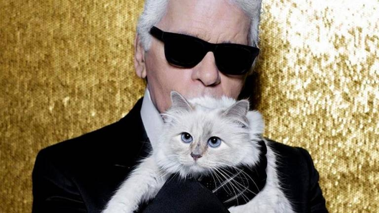 Could Lagerfeld's cat Choupette inherit his millions?