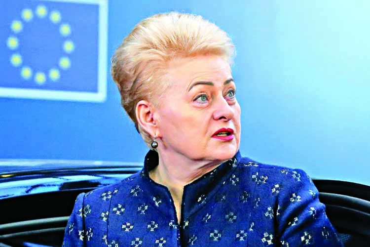 Lithuanians elect new president