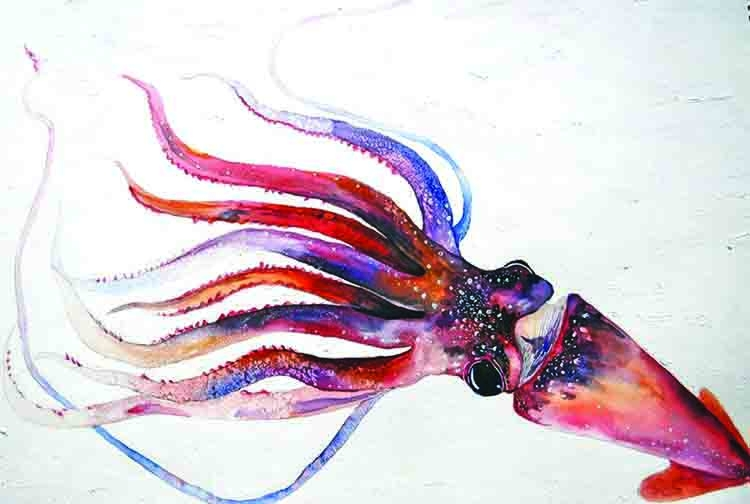 The squid who fell in love with the sun