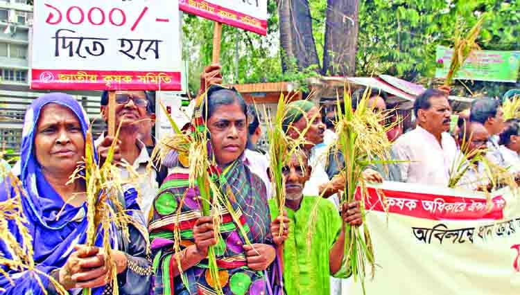 Farmers, students take to streets for fair paddy price