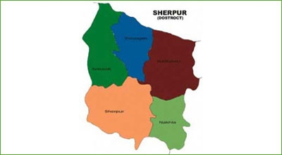 Two minors of a family drown in Sherpur