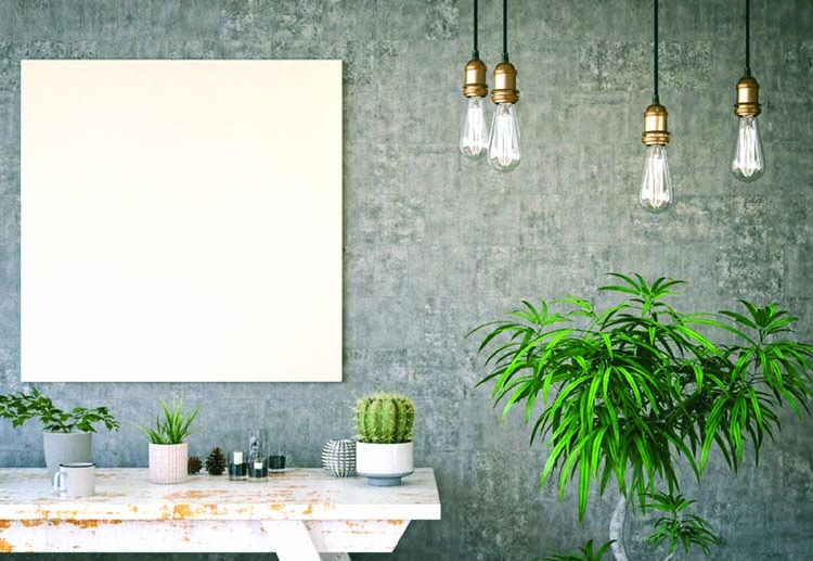 Green your home Add statement house plants
