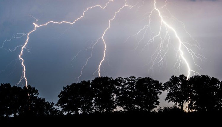 4 killed by lightning in Pabna