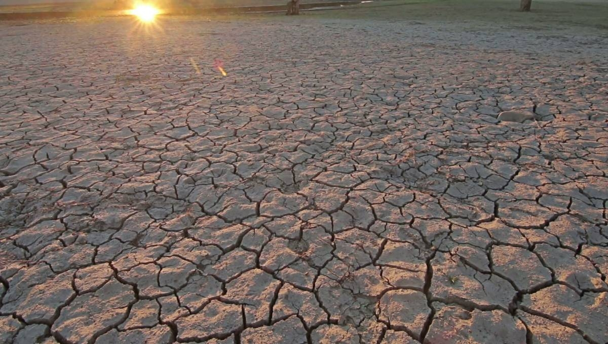 July the hottest month in history: UN