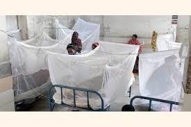 Help desks opened in Cumilla to tackle dengue