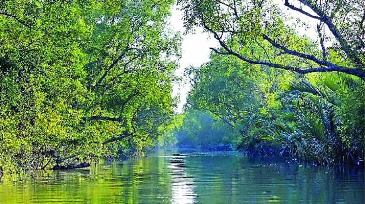 Red alert issued in Sundarbans ahead of Eid