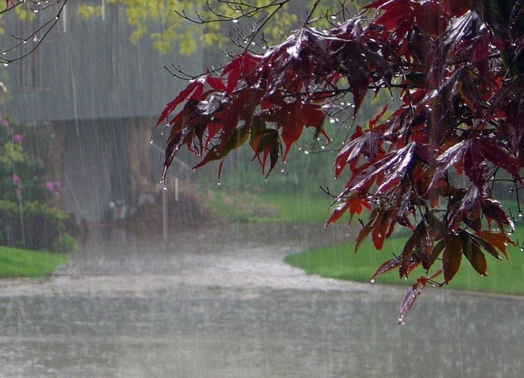 Rain likely to dampen Eid joys