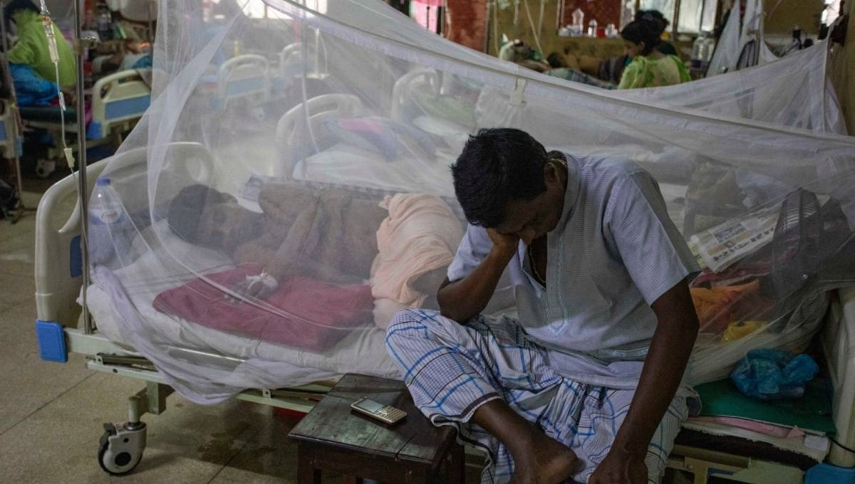 902 new dengue patients hospitalised in 24 hours