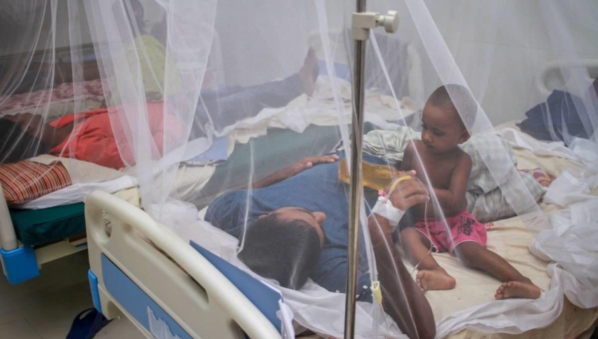 716 more dengue patients hospitalized