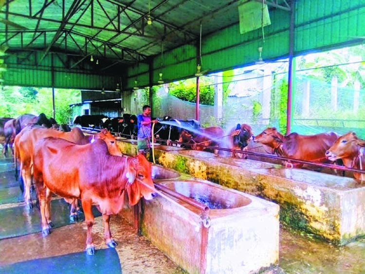 'Farmside Agro Ltd': Example of being self-reliant for young entrepreneurs