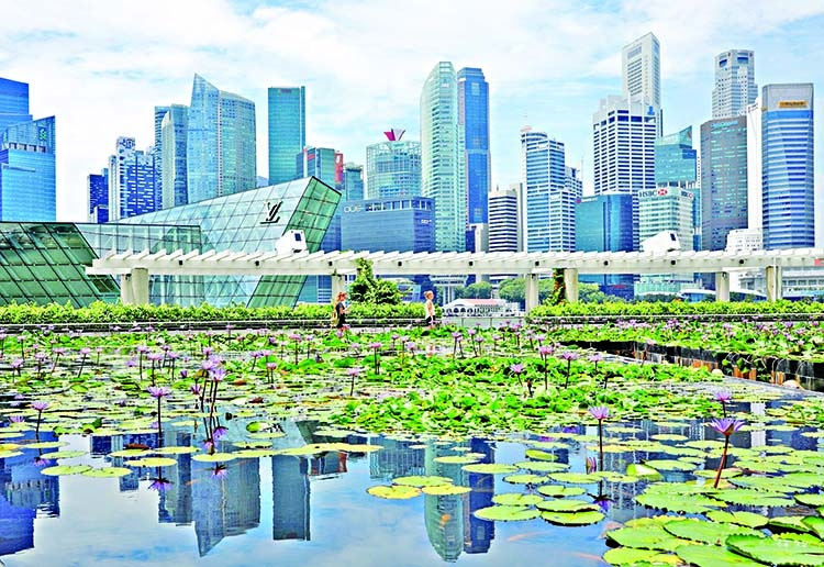 Singapore seen narrowly dodging recession in Q3