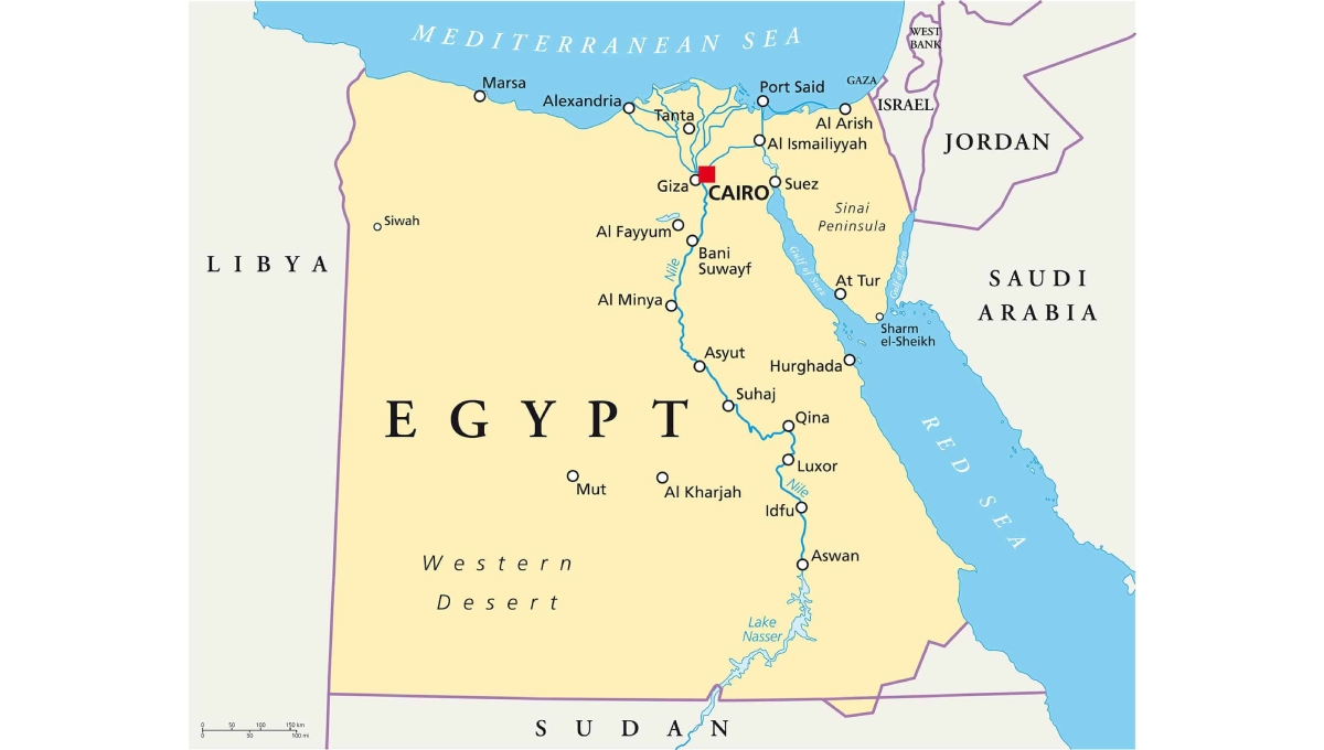 Rights lawyers: Egypt frees more than 200 held in crackdown