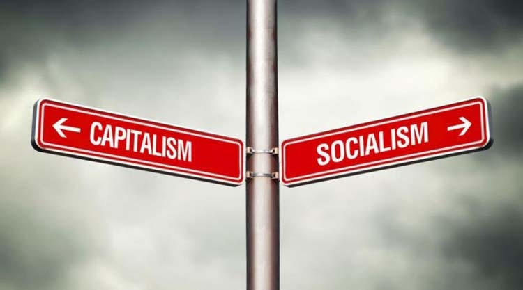 Capitalism or socialism -- where  are the remedies?