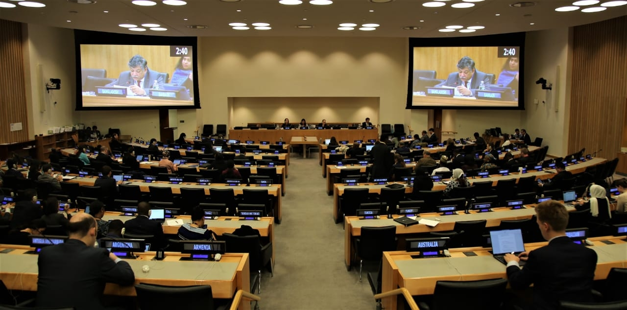 Bangladesh tables resolution on natural fibers use at UN
