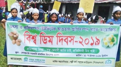 World Egg Day observed in Gaibandha