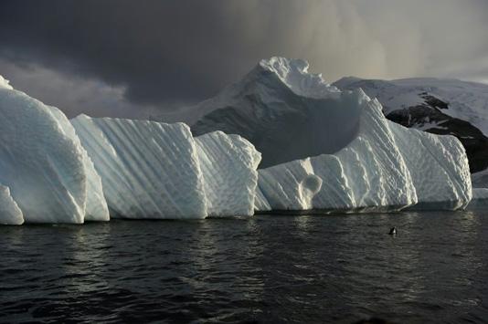 Antarctic marine sanctuary talks deadlocked for 8th straight year