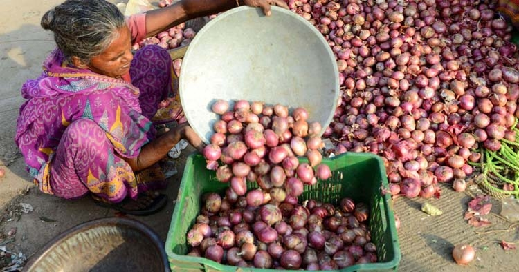 Why are onion prices high in India?