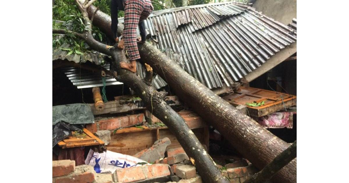 4,000-5,000 houses damaged by cyclone Bulbul: Minister