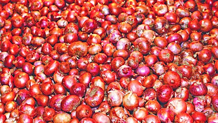 Onion price dropping in city markets