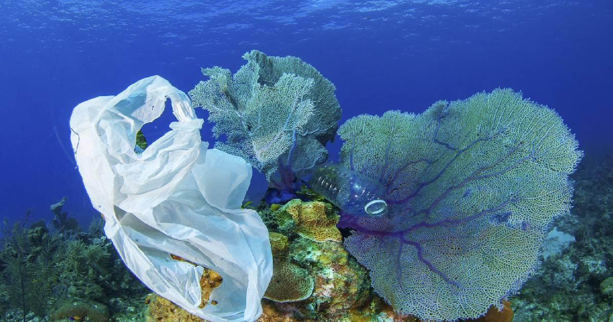 Microplastics 'ubiquitous' in European rivers
