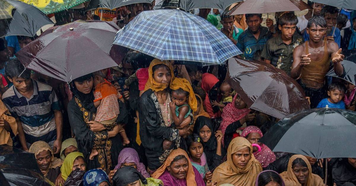 Rohingyas to go back when they're ready: IOM Bangladesh chief