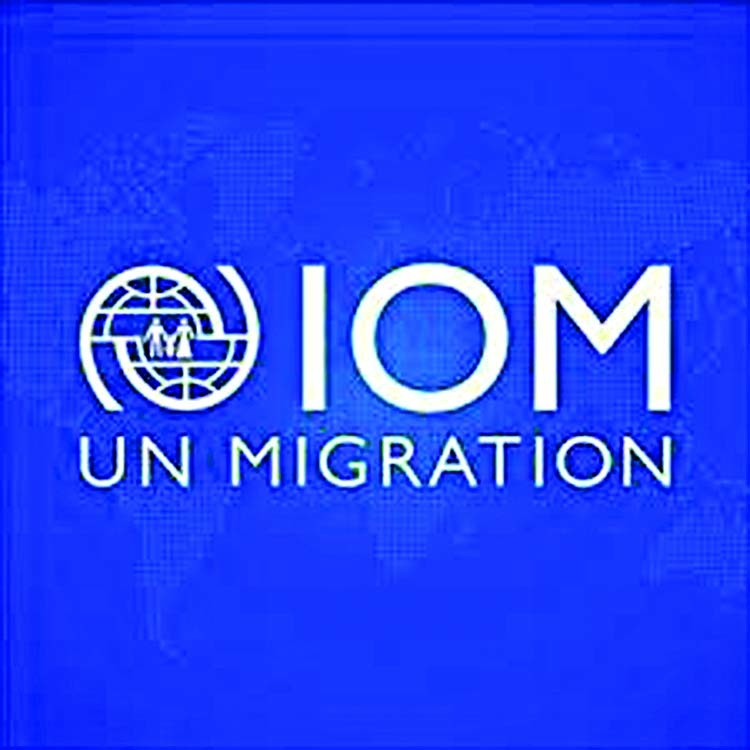 Rohingyas to go back when they're ready: IOM BD chief