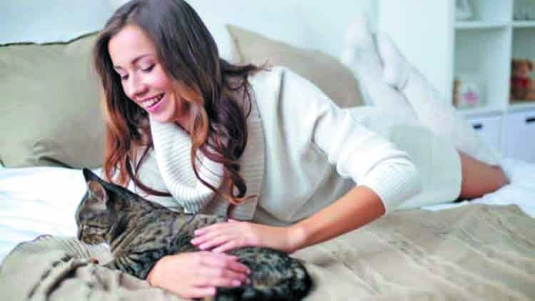 Owning a cat is good for you