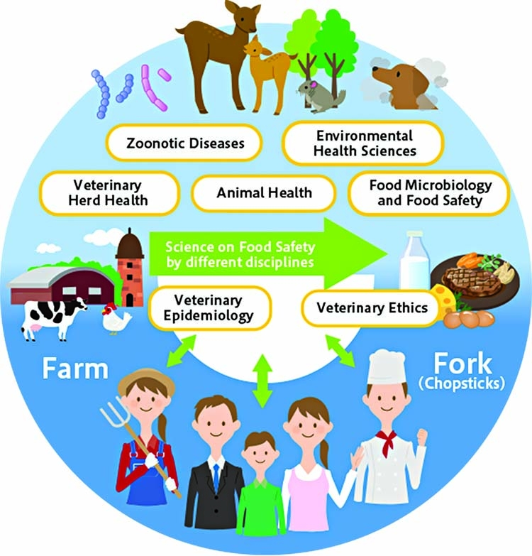 Role of veterinarians for animal food safety and animal welfare