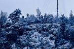 Biggest snowfall in decades blankets Chile