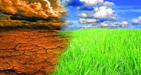 Climate change in Bangladesh: Causes, effects and suggestions