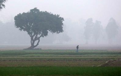 Light to moderate fog likely over country