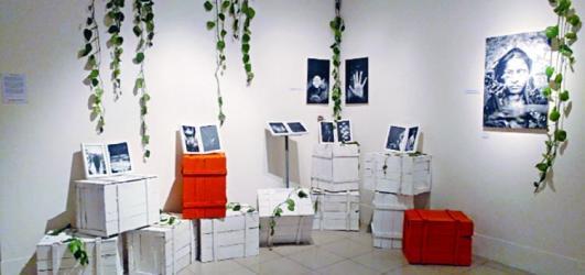 Indo-Bangla photo exhibition ends