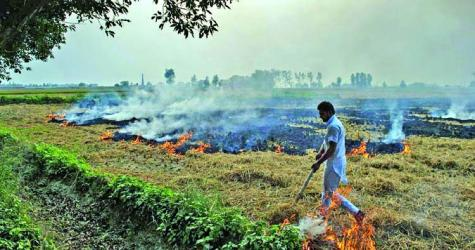 Punjab farmers want to stop burning stubble that causes Delhi pollution