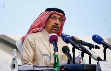 Saudi Arabia sees domestic energy use falling