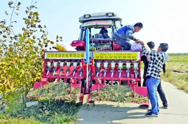 China turns to driverless tractors