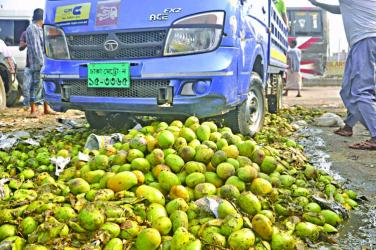 400 mounds of mangoes destroyed