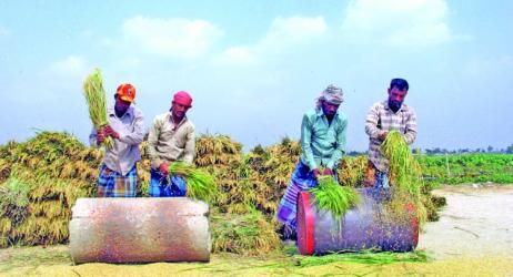 Govt raises rice import duty to 55%