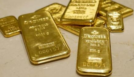 Man held with 8 gold bars in Benapole
