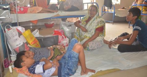 36 new dengue patients hospitalized in 24 hrs