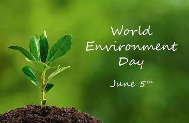World Environment Day 2020: Theme and it\'s significance.