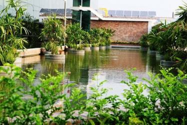 Environmental sustainability and rural development in Bangladesh